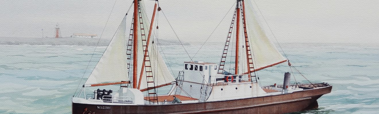 Nelcebee water colour by John Ford