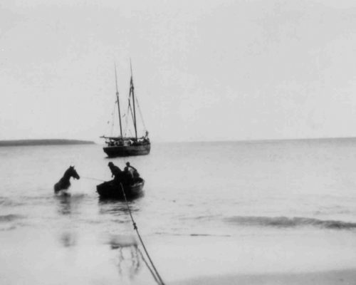 Swimming a horse between a ketch and shore
